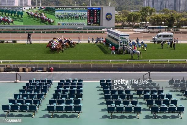 February 23 : Horses gallop past the empty public stands at Sha Tin Racecourse during the Race 4 Sun Tin Wai Handicap on February 23 , 2020 in Hong...