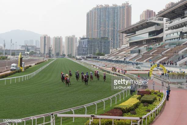 March 1 : Horses gallop past the empty public stands at Sha Tin Racecourse during the Race 1 Lei Muk Shue Handicap on March 1 , 2020 in Hong Kong....