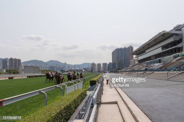 March 14 : Horses gallop past the empty public stands at Sha Tin Racecourse during the Race 3 Fung Mo Handicap on March 14, 2020 in Hong Kong. The...