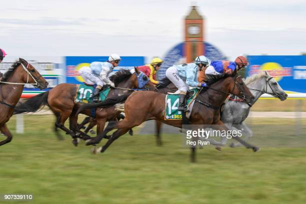 Horses go past the post for the first time in the Pipeline Fabrications 0 58 Handicap at Camperdown Racecourse on January 20 2018 in Camperdown...