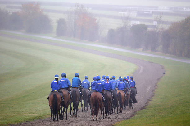Image result for jonjo o'neill stable