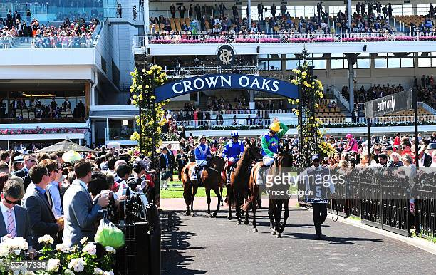 Horses head out to the barriers in the Crown Oaks during 2012 Crown Oaks Day at Flemington Racecourse on November 8 2012 in Melbourne Australia