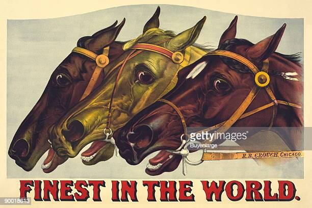 Horses Heads at Finish Line Taken from an advertisement from 1885