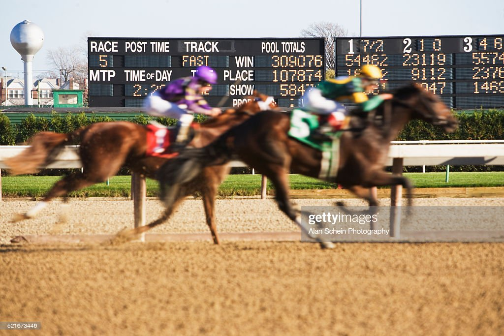 Horses In Aqueduct Horse Race Stock Photo - Getty Images