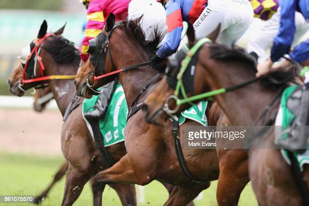 Horses in race 4 during The Everest Day at Royal Randwick Racecourse on October 14 2017 in Sydney Australia