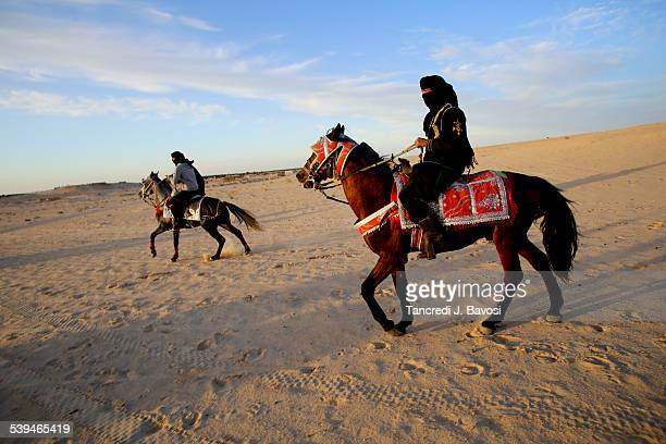 Horses in the Sahara Desert