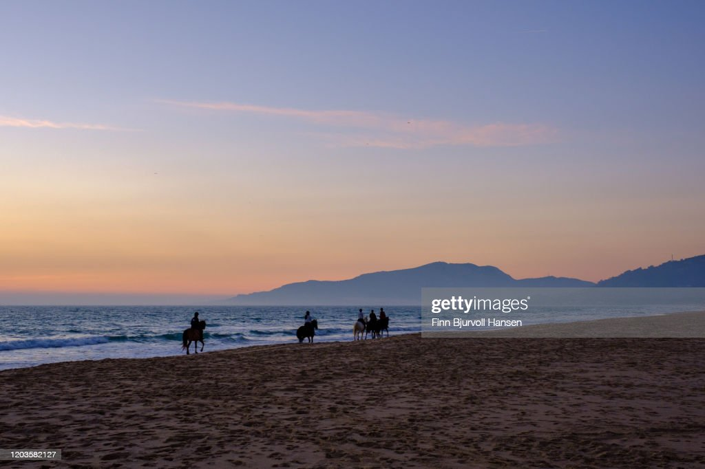 Horses in the sunset on the Los Lanches beach in Tarifa : Stock Photo