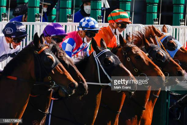 Horses jump from the barriers for race 2 the Cliff Clare Handicap during Sydney Racing at Royal Randwick Racecourse on August 07, 2021 in Sydney,...