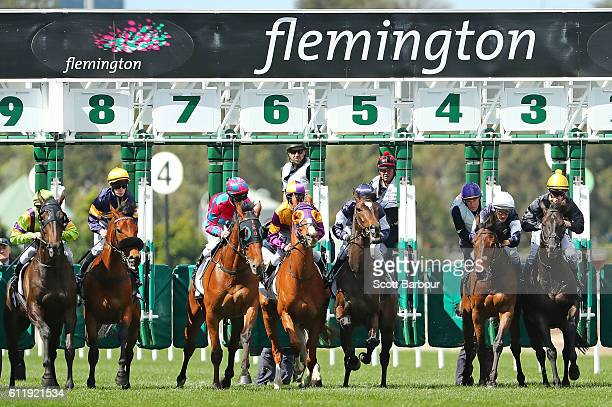 Horses jump from the gates at the start of race 5 The Bart Cummings during Melbourne Racing at Flemington Racecourse on October 2 2016 in Melbourne...