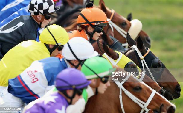 Horses jump out of the gates at the start of race 5 during Sydney Racing at Rosehill Gardens on July 28 2018 in Sydney Australia