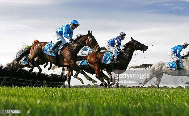 Horses jump over a hurdle during race 4 The Australian Hurdle during the Australian Hurdle and Steeple Day at Sandown Lakeside on June 2 2012 in...