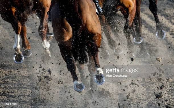 Horses kick up the Polytrack surface at Chelmsford City racecourse on February 7, 2018 in Chelmsford, England.