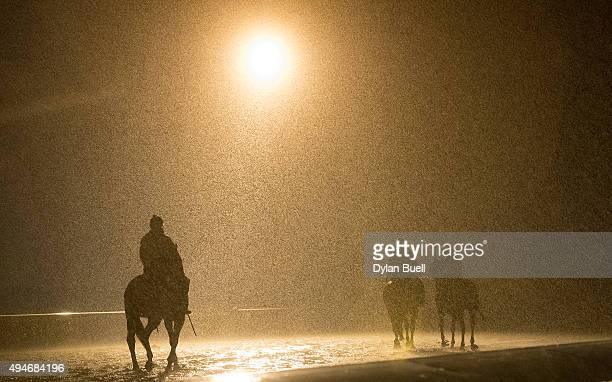 Horses make their way around the track as rain falls at Keeneland Racecourse during Breeder's Cup workouts on October 28 2015 in Lexington Kentucky