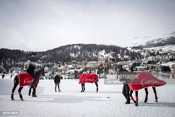 Horses of the team 'Cartier' are seen in front on the frocen lake in St Moritz during the Snow Polo World Cup 2015 on February 1 2015 in St Moritz...