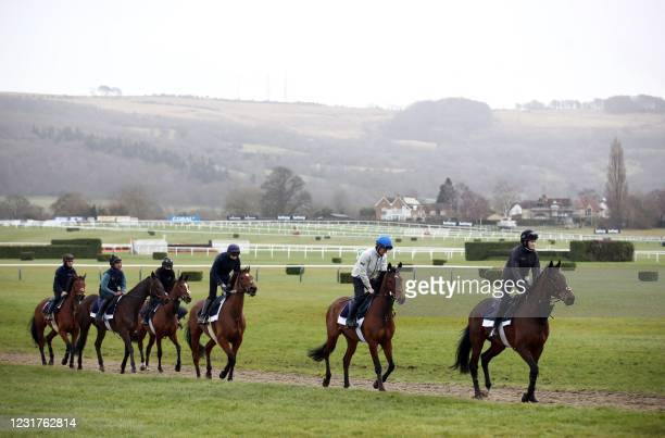 Horses on the gallops ahead of Day Two of the Cheltenham Festival at Cheltenham Racecourse, in Cheltenham, England on March 17, 2021. - The...
