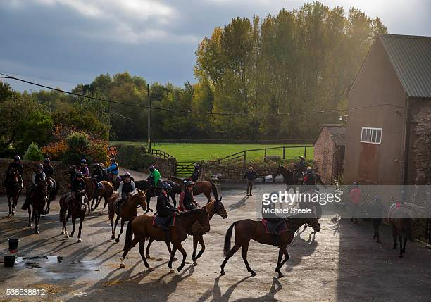 Horses parade ahead of second lot at Sandhill Racing Stables on October 26 2015 in Minehead England Sandhill Racing Stables set in 500 hundred acres...