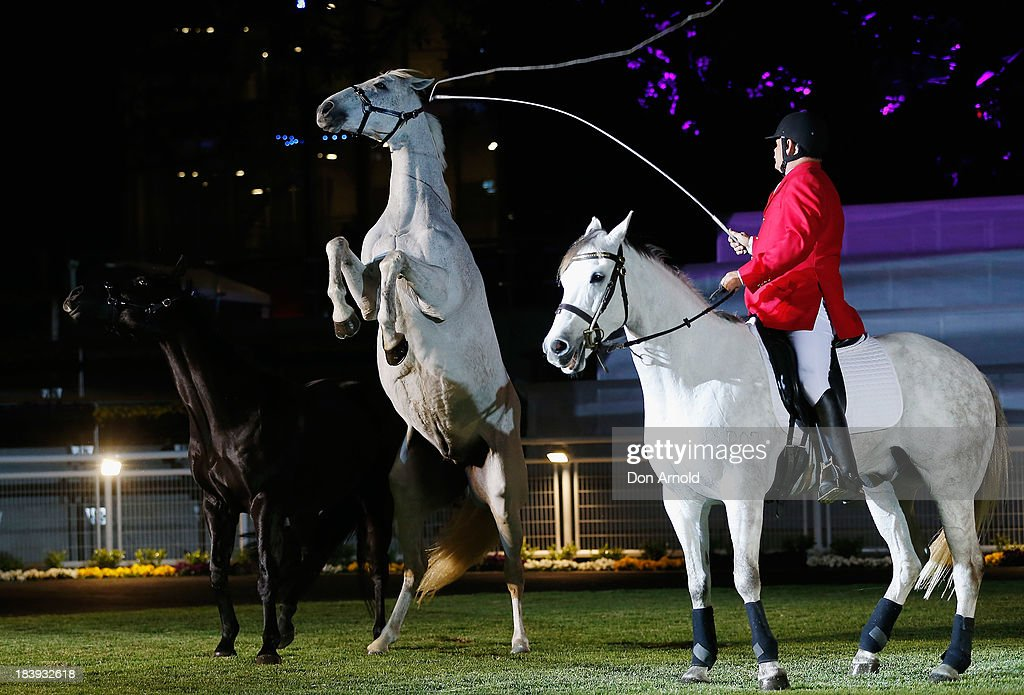 Horses perform as part of a Theatre of the horse ' shown as part of the Gala Launch event to celebrate the new Australian Turf Club Grandstand at Royal Randwick Racecourse on October 10, 2013 in Sydney, Australia.