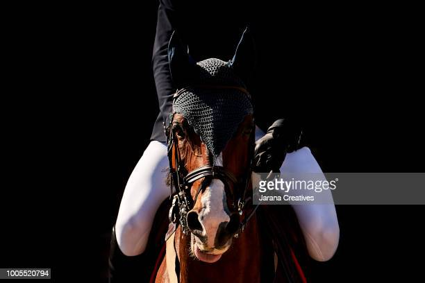 horses - corrida de cavalos evento equestre - fotografias e filmes do acervo