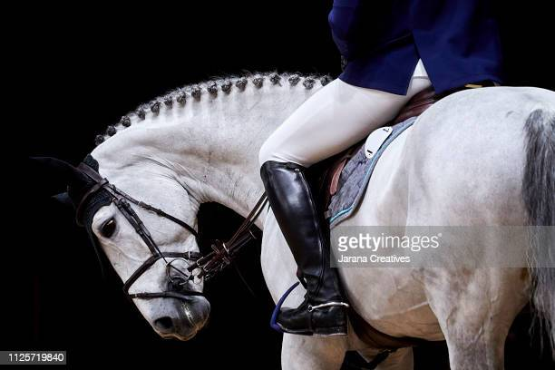 horses - equestrian show jumping stock pictures, royalty-free photos & images