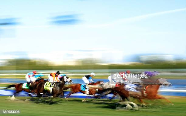 Horses race ahead of the $12 Million Pegasus World Cup at Gulfstream Park on January 28 2017 in Hallandale Florida