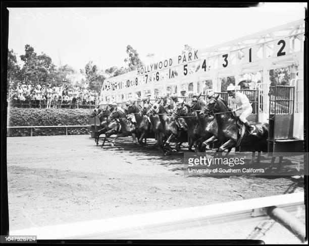 Horses Race Hollywood Park 19 July 1958 Johnny LongdenRoy HarrisWillie Shoemaker 'Sports' Caption slip reads 'Photographer Jensen Assignment...