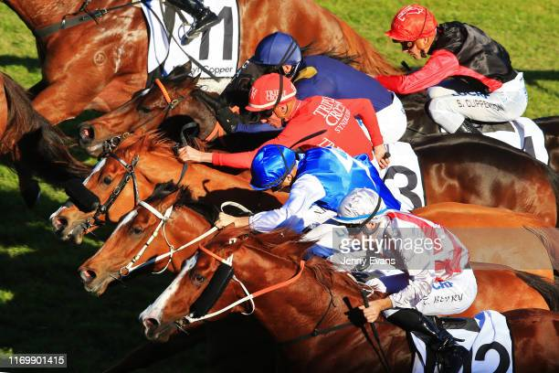 Horses race to the line in race 6 the Mostyn Copper Show County Quality during Sydney Racing at Royal Randwick Racecourse on August 24, 2019 in...