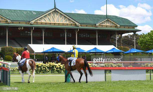 Horses return to scale in front of the empty grandstand with no crowds in attendance due to Covid restrictions, during the No Fuss Event Hire Maiden...