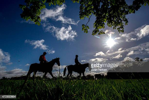 Horses return to the stables after a morning exercise session on the day before the start of the Badminton Horse Trials on May 06 2015 in Badminton...