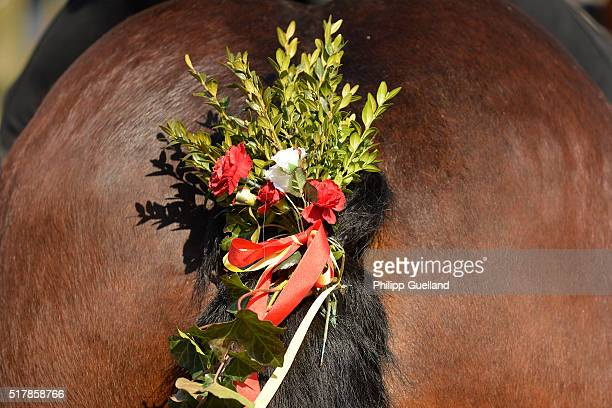 A horse's tail hair is decorated during a ride in the annual GeorgiRitt Easter Monday procession in southern Bavaria on March 28 2016 near Traunstein...