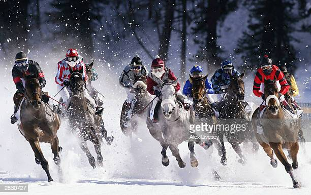 Horses take the first bend in the sprint race at the White Turf Horse Racing Meet held on the frozen lake in St Moritz Switzerland on February 9 2003