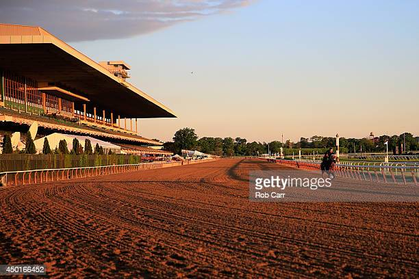 Horses train on the track at Belmont Park on June 6 2014 in Elmont New York The the 146th running of the Belmont Stakes is Saturday