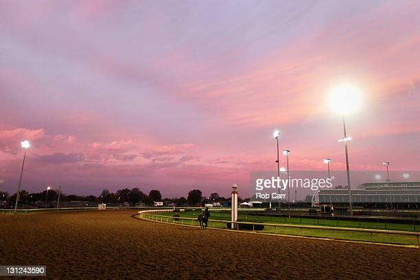Horses train on the track during morning workouts for the upcoming Breeders' Cup World Championships at Churchill Downs on November 3, 2011 in...