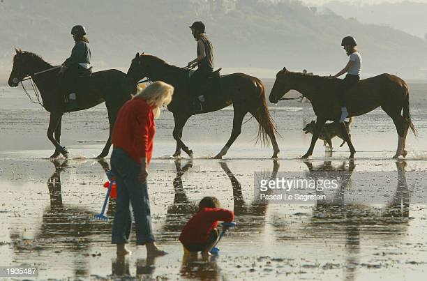 Horses walk on a beach April 16 2003 in Deauville north of France Temperatures in France and Britain have soared to highs of 77 degrees Fahrenheit...