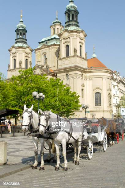 Horses with buggy at Old Town Square, Prague, Czech Republic