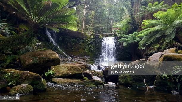 Horseshoe Falls | Mount Field National Park | Tasmania | Australia