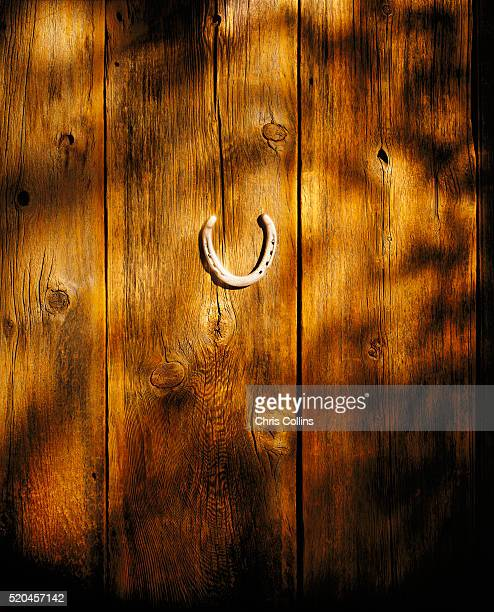 Horseshoe on Wood Panels