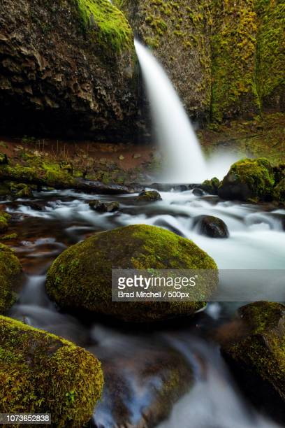 Horsetail Creek plummets over Ponytail Falls and moss covered boulders, Columbia River Gorge Nationa