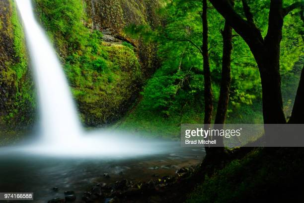horsetail falls, columbia river gorge - brook mitchell stock pictures, royalty-free photos & images