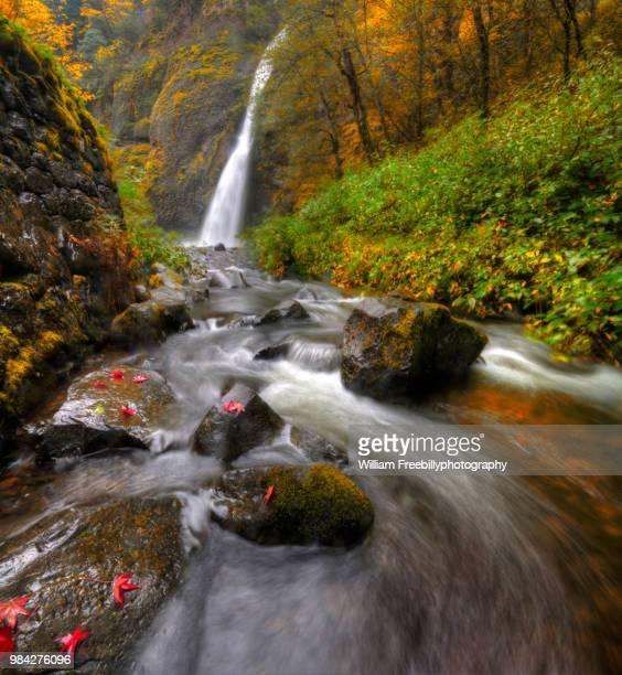 Horsetail Falls with autumn foliage