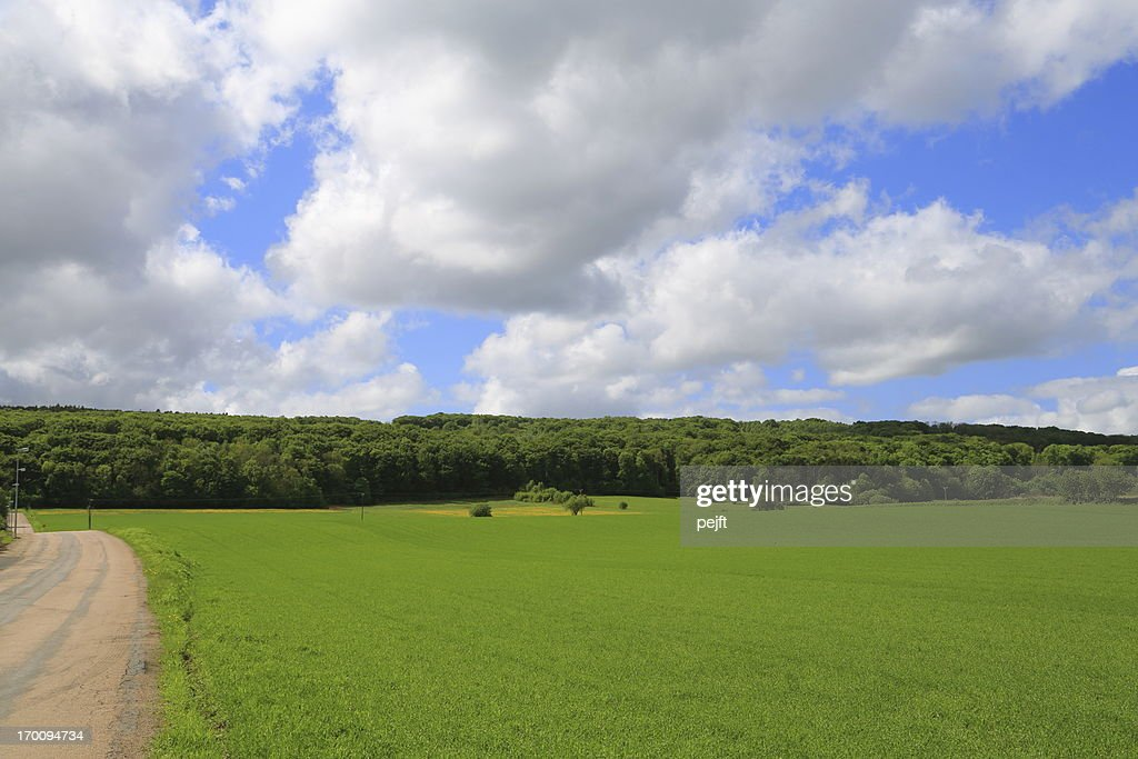 Horst - Hallandsås Sweden : Stock Photo