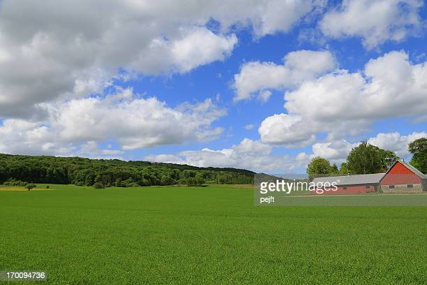 horst - hallandsås sweden - pejft stock pictures, royalty-free photos & images