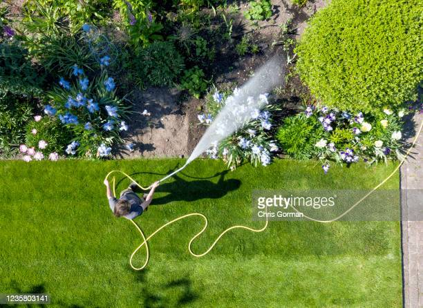 Horticultural Student Jason Saul pictured at a dry Wisley on May 26, 2020 in Surrey, England. A lack of rain has seen gardens across the country...