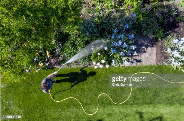 Horticulturalist Becks Mackey gives the flowers a muchneeded drink at Wisley Garden on May 26 2020 in Surrey England A lack of rain has seen gardens...