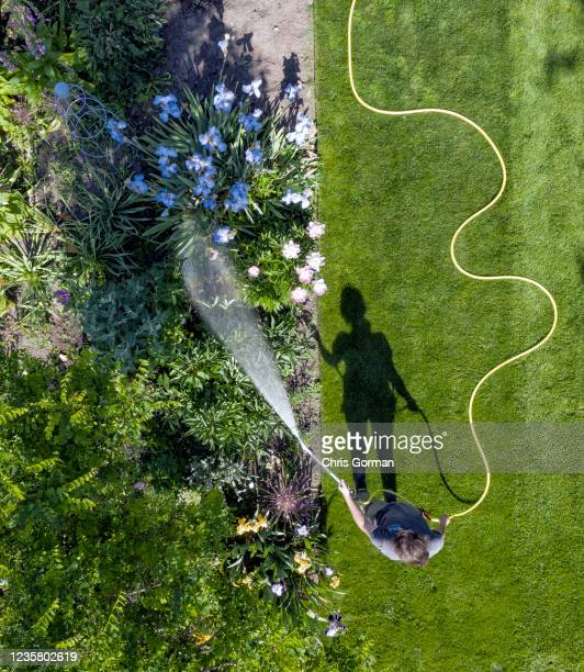 Horticulturalist Becks Mackey gives the flowers a much-needed drink at Wisley Garden on May 26, 2020 in Surrey, England. A lack of rain has seen...