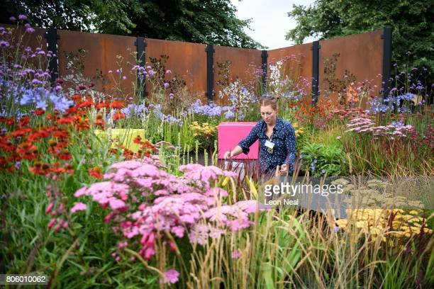 """Horticulturalist Charlie Bloom works on her garden """"Colour Box"""" on the press preview day of the Hampton Court Palace Flower Show at Hampton Court..."""