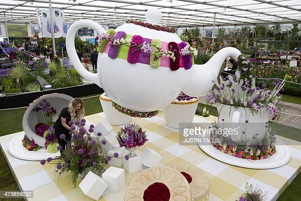 A horticulturist makes adjustments to 'Time for Tea' on display in the Great Pavilion at the 2015 Chelsea Flower Show in London on May 18 2015 The...
