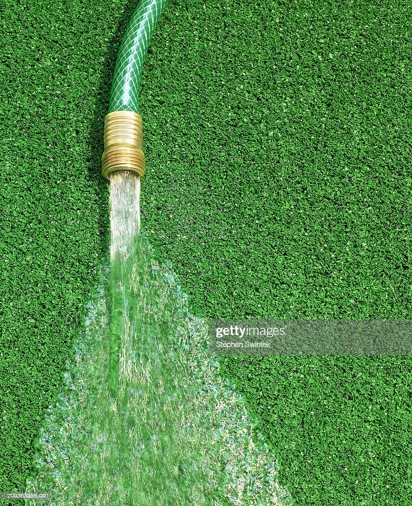 hose running water on artificial grass stock photo getty images