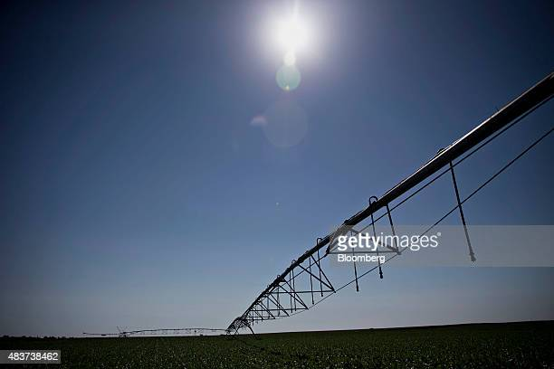 Hoses hang from a Lindsay Corp Zimmatic center pivot irrigation system in a field outside Omaha Nebraska US on Wednesday Aug 12 2015 Lindsay Corp...