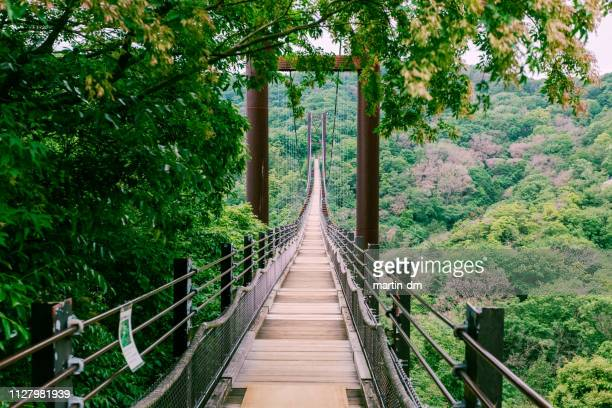 hoshi no buranko, osaka - suspension bridge stock pictures, royalty-free photos & images