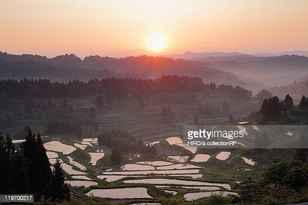 Hoshitoge Rice Terraces